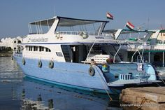 Dive Resort, Red Sea, Scuba Diving, Underwater, Red And Blue, Egypt, Destinations, Boat, Colour