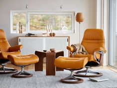 With its classic design and numerous innovative comfort technologies, the Stressless Sunrise is a recliner your senses will want to take in each and every day. Modern Dining Chairs, Living Room Chairs, Living Room Furniture, Office Furniture, Leather Recliner Chair, Recliner Chairs, Lounge Chairs, Polywood Adirondack Chairs, Reclining Sofa