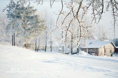 Winter Time in Lithuania by loretoidas, via Flickr
