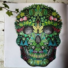 Skull enchanted forest Enchanted Forest Book, Enchanted Forest Coloring Book, Joanna Basford, Purple Crayon, Johanna Basford Coloring Book, Colouring Techniques, Color Blending, Coloring Book Pages, Skull Art