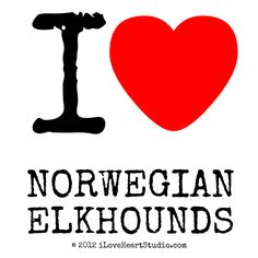 Norweigen Elkhounds | Love Heart Norwegian Elkhounds