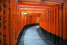 Fushimi Inari-taisha Shrine – Cavan Flynn