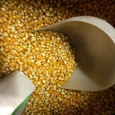 It's simple to mill your own grains and seeds for bread and pasta and the enhanced flavor and freshness make it well worth it. Don't have a grain mill? Well, if you have a KitchenAid mixer then consider purchasing their fabulous grain mill attachment. Grind corn for great cornbread and polenta!