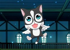 So this is my new exceed for Ravenna I doing this cat from my friend photo of her cat zyzio . Fairy Tail Cat, Fairy Tail Anime, Oc Manga, Anime Oc, Fairy Tail Characters, Story Characters, Exceed Fairy Tail, Fairy Tail Fanfiction, Fairytail
