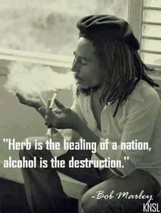 Bob Marley quote on smoking marijuana drinking alcohol. Ain't that the truth! Ganja, Stoner Quotes, 420 Quotes, Stoner Humor, Eminem Quotes, Rapper Quotes, Weed Humor, Weed, Classic Rock