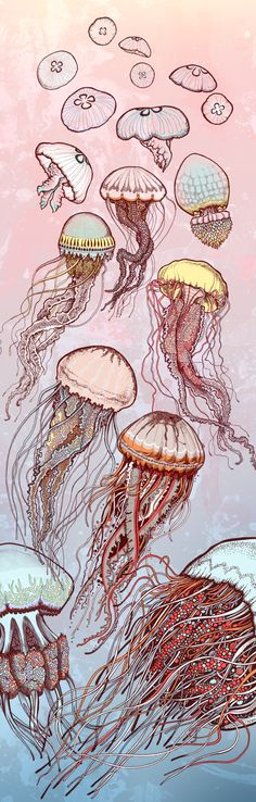 beautiful colours and movement under the sea by SFHD , via Behance
