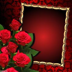 Edit image, resize image, crop pictures and appply effect to your images. Crop Pictures, Flowers Gif, Framed Wallpaper, Birthday Frames, Rose Frame, Special Flowers, Frame Clipart, Borders And Frames, Alphabet