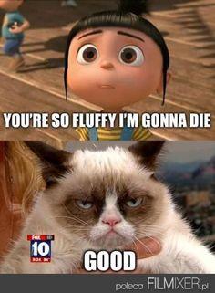 Agnes VS Grumpy Cat // www.filmixer.pl