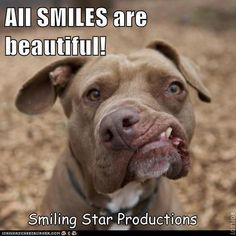 All Smiles are beautiful ~