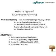 Advantages of farming! Mushroom Benefits, Environmental Pollution, Farming, Stuffed Mushrooms, Good Things, Life, Stuff Mushrooms