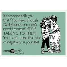 Because you can never have too many Dachshunds in your life!!