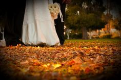 Fall wedding tips on a budget!