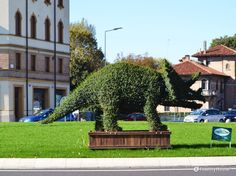 La mostra dei Dinosauri in Centro San Gaetano di Via Altinate è aperta e pubblicizzata anche alla Rotonda del Biri a Padova.
