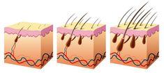 63 Șampon Susține Creșterea Părului Și Stopează Căderea Părului Argan Oil Conditioner, Cheveux Ternes, Increase Hair Growth, Regrow Hair, Stop Hair Loss, Hair Regrowth, Professional Hairstyles, Healthy Hair, Hair Growth