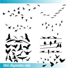 Image detail for -Birds Silhouette Vector Graphics – nice collection of birds ...