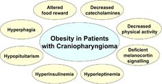 A Summary of metabolic and clinical findings involved in dysregulated energy balance in hypothalamic obesity. #craniopharyngioma. Article (Source): http://journal.frontiersin.org/article/10.3389/fendo.2011.00049/full