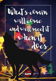 El Puffs. Hagrid nos tiene esta frase para los tiempos dificiles :) #Frase #cita #quote #inspiracion #tipografia