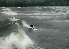 Surfen Wellenreiten Ostseebad BInz Insel Rügen Herbst germany