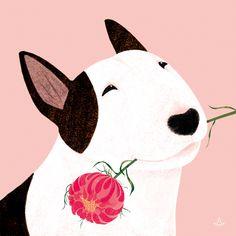 Uplifting So You Want A American Pit Bull Terrier Ideas. Fabulous So You Want A American Pit Bull Terrier Ideas. English Bull Terriers, Bull Terrier Dog, Dog Illustration, Illustrations, Best Dog Photos, Bullen, Dog Paintings, Dog Art, Dog Love