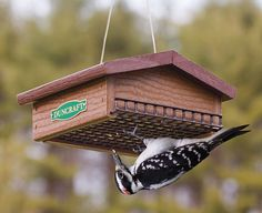 Upside Down Suet: Upside down feeding keeps starlings away! See http://www.duncraft.com