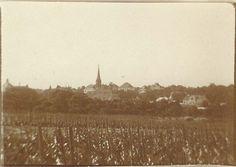 Die Riede Langacker mit Blick zur Heiligenstaedter Kirche etwa 1903. Hier…