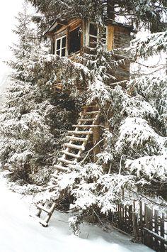 Snowy Tree House / The Green Life <3