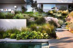 wild modern mit Pool, Gartenplatten und Blockstufen