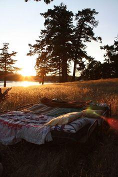 Sleeping outside on a warm summer night