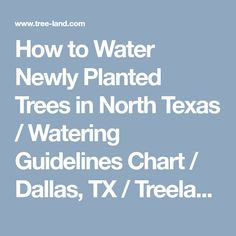How to Water Newly Planted Trees in North Texas / Watering Guidelines Chart / Dallas, TX / Treeland Nursery Trees And Shrubs, Trees To Plant, Tree Care, Growing Tree, Plant Care, Healthy Life, Dallas, Texas, How To Apply