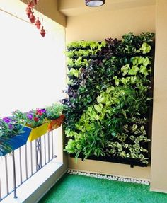 Green wall/Vertical Garden design done using many indoor plants and have used balcony railing planters with potted flowering plants for a Balcony Garden set up at Bangalore location. Railing Planters, Balcony Planters, Balcony Railing, Vertical Garden Design, Garden Wall Decor, Small Balcony Garden, Balcony Railing Design, Garden Design, Wall Garden