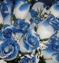royal blue wedding bouquets   Wedding Flowers – Bridal/Floral – White/Royal Blue   Silk Wedding ...