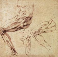 michelangelo buonarroti drawings | ... michelangelo buonarroti three studies of a leg by michelangelo