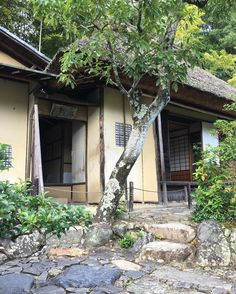 """Abundant, shabby and poorly looking house is the tea ceremony room. It was designed to be looked shabby. The shabbiness is called """"Wabi-Sabi"""", the most important concept of beauty in Japanese culture.  #Tojiin #temple #等持院 #WabiSabi #侘び寂び #garden #庭園 #Kyoto #京都"""