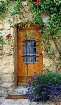 Beautiful doorway in Vaison-la-Romaine, Vaucluse, France. Cool Doors, The Doors, Unique Doors, Windows And Doors, Front Doors, Front Entry, Door Knockers, Door Knobs, Vaison La Romaine