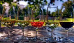 Weintouren und Weinproben in Kapstadt, Südafrika