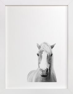 Horse art for the interior design lover looking to add rustic charm from the ranch. Presence by Debra Butler at minted.com