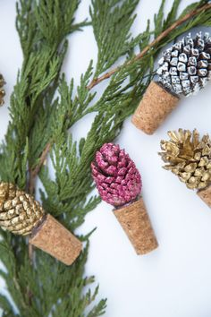 DIY Pinecone Cork_001
