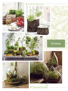 little garden ideas