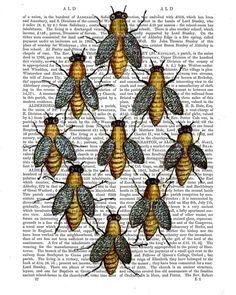 Medieval Bees : Mixed Media Art Print Giclee Print Digital Original Illustration wall art wall decor Wall Hanging