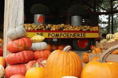 De Pompoenerie Twente in Mander - Maudgeniet. Pumpkin, Vegetables, Kids, Food, Young Children, Pumpkins, Boys, Essen, Vegetable Recipes