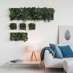 Plant Island Wall Frame Three Pack by Grattify, the perfect gift for Explore more unique gifts in our curated marketplace. Hanging Plants Outdoor, Indoor Outdoor, Diy Hanging, Indoor Plants, Indoor Gardening, Deco Nature, Masonry Wall, Comfortable Pillows, Plant Wall