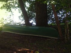 Canoe, but we also have 2 kayaks