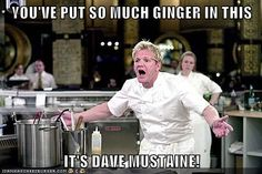 YOU'VE PUT SO MUCH GINGER IN THIS  IT'S DAVE MUSTAINE!