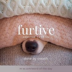 furtive ~ done by stealth