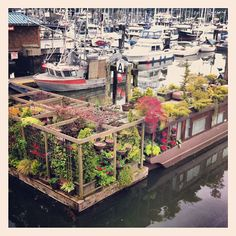 Floating Gardens and House.  Gibsons, British Columbia.  (photo:sandiamorim)