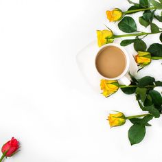 """Polubienia: 28, komentarze: 1 – Blog Urodowo-Lifestylowy (@misslilith) na Instagramie: """"Dzień dobry w niedzielę 😃 Jakie macie plany na dziś? Ja przyznaję bez bicia, że jeszcze się lenię w…"""""""