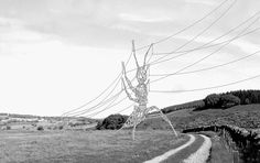 The winner of a new generation of electricity pylons is announced