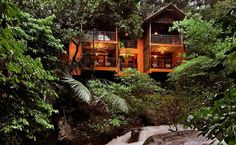 Stay experience in a Treehouse with the view of Wayanad valley is one delightful experience you would not want to miss! Enthral in this unique stay experience.