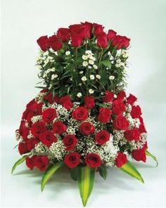 imagenes de rosas rojas para descargar