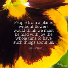 """""""People from a planet without flowers would think we must be mad with joy the whole time to have such things about us."""" -Iris Murdoch  More flower quotes: http://www.bhg.com/gardening/flowers/flower-quotes/#page=8"""
